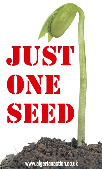 just one seed  cover